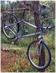 http://www.2qbike.com/images/limpiar bici2.jpg